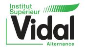 Institut Supérieur Vidal Alternance